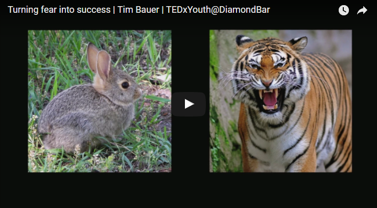 Turning fear into success- Tim Bauer TED Talk